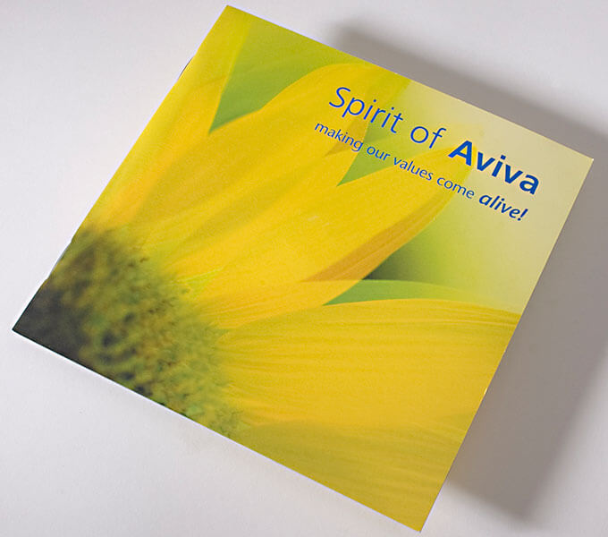 Aviva Induction pack cover